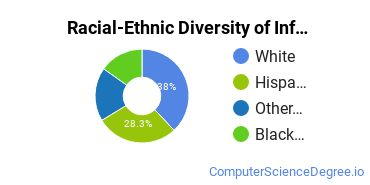 Racial-Ethnic Diversity of Info Systems Undergraduate Certificate Students
