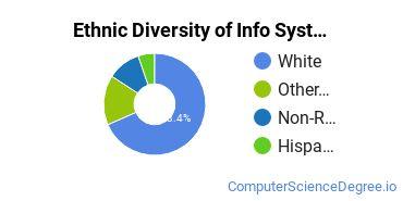Information Systems Majors in VT Ethnic Diversity Statistics