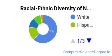 Racial-Ethnic Diversity of Networking Associate's Degree Students