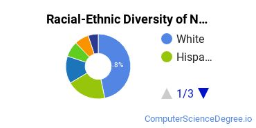 Racial-Ethnic Diversity of Networking Students with Bachelor's Degrees