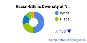 Racial-Ethnic Diversity of Networking Bachelor's Degree Students