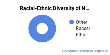 Racial-Ethnic Diversity of Networking Doctor's Degree Students