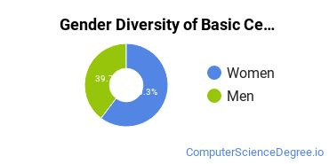 Gender Diversity of Basic Certificates in Data Processing