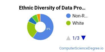 Data Processing Majors in CA Ethnic Diversity Statistics