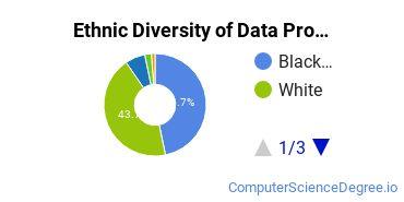 Data Processing Majors in GA Ethnic Diversity Statistics