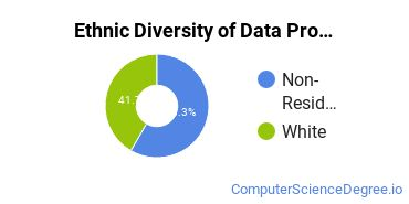 Data Processing Majors in IA Ethnic Diversity Statistics