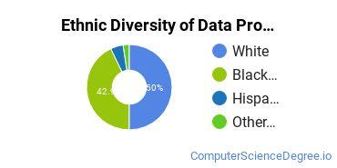 Data Processing Majors in LA Ethnic Diversity Statistics
