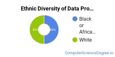 Data Processing Majors in MD Ethnic Diversity Statistics