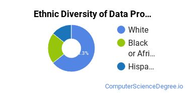 Data Processing Majors in MN Ethnic Diversity Statistics