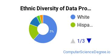 Data Processing Majors in NV Ethnic Diversity Statistics