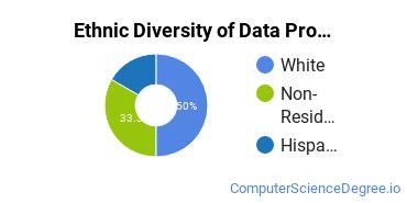 Data Processing Majors in NJ Ethnic Diversity Statistics