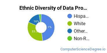 Data Processing Majors in NM Ethnic Diversity Statistics
