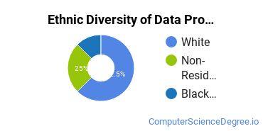 Data Processing Majors in ND Ethnic Diversity Statistics