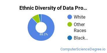 Data Processing Majors in OH Ethnic Diversity Statistics