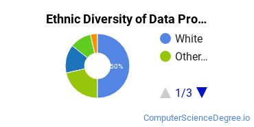 Data Processing Majors in PA Ethnic Diversity Statistics