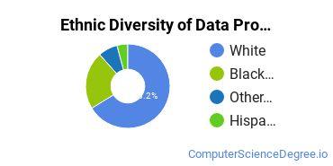 Data Processing Majors in SC Ethnic Diversity Statistics