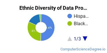 Data Processing Majors in TX Ethnic Diversity Statistics