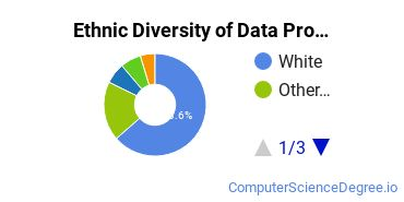 Data Processing Majors in WA Ethnic Diversity Statistics