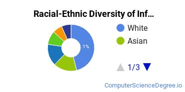 Racial-Ethnic Diversity of Information Science Students with Bachelor's Degrees