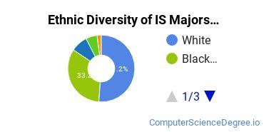 Information Science Majors in GA Ethnic Diversity Statistics