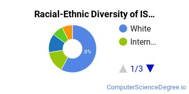 Racial-Ethnic Diversity of IS Graduate Certificate Students