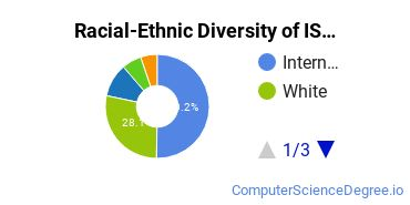 Racial-Ethnic Diversity of IS Master's Degree Students