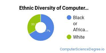 Computer Support Specialist Majors in AL Ethnic Diversity Statistics