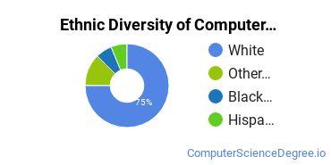 Computer Support Specialist Majors in AK Ethnic Diversity Statistics
