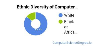 Computer Support Specialist Majors in AR Ethnic Diversity Statistics