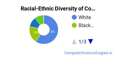 Racial-Ethnic Diversity of Computer Support Specialist Associate's Degree Students