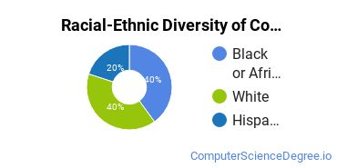 Racial-Ethnic Diversity of Computer Support Specialist Students with Bachelor's Degrees