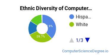 Computer Support Specialist Majors in CA Ethnic Diversity Statistics