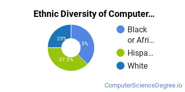 Computer Support Specialist Majors in CT Ethnic Diversity Statistics