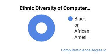 Computer Support Specialist Majors in DE Ethnic Diversity Statistics