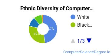 Computer Support Specialist Majors in IL Ethnic Diversity Statistics