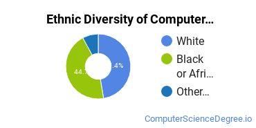 Computer Support Specialist Majors in LA Ethnic Diversity Statistics