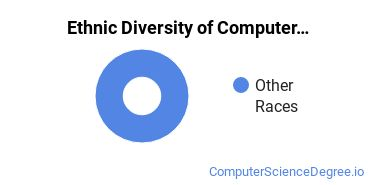 Computer Support Specialist Majors in ND Ethnic Diversity Statistics
