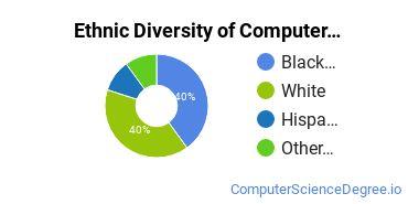 Computer Support Specialist Majors in SC Ethnic Diversity Statistics