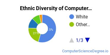 Computer Support Specialist Majors in WA Ethnic Diversity Statistics