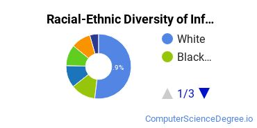 Racial-Ethnic Diversity of Information Technology Management Students with Bachelor's Degrees