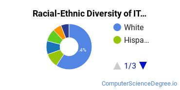 Racial-Ethnic Diversity of IT Project Management Students with Bachelor's Degrees