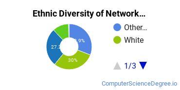 Network Administration Majors in AZ Ethnic Diversity Statistics