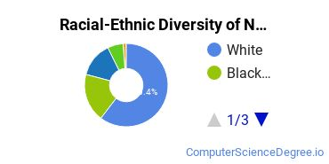 Racial-Ethnic Diversity of Network Administration Associate's Degree Students
