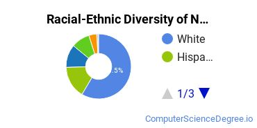 Racial-Ethnic Diversity of Network Administration Students with Bachelor's Degrees
