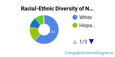 Racial-Ethnic Diversity of Network Administration Bachelor's Degree Students
