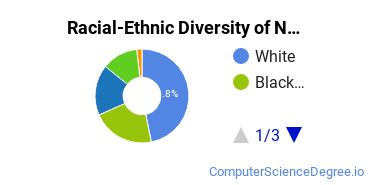 Racial-Ethnic Diversity of Network Administration Basic Certificate Students