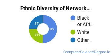 Network Administration Majors in CO Ethnic Diversity Statistics