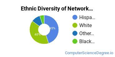 Network Administration Majors in CT Ethnic Diversity Statistics