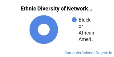 Network Administration Majors in DC Ethnic Diversity Statistics