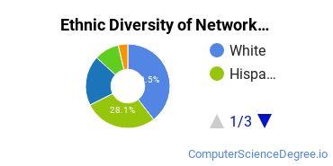 Network Administration Majors in FL Ethnic Diversity Statistics